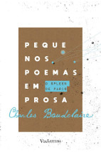 Pequenos poemas em prosa